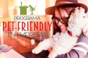 fogaus-pet-friendly-empresas