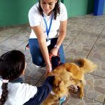 EQUIPO TERAPIA ASISTIDA CON ANIMALES