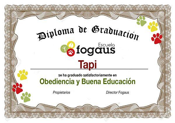 Diploma de Adiestramiento Canino