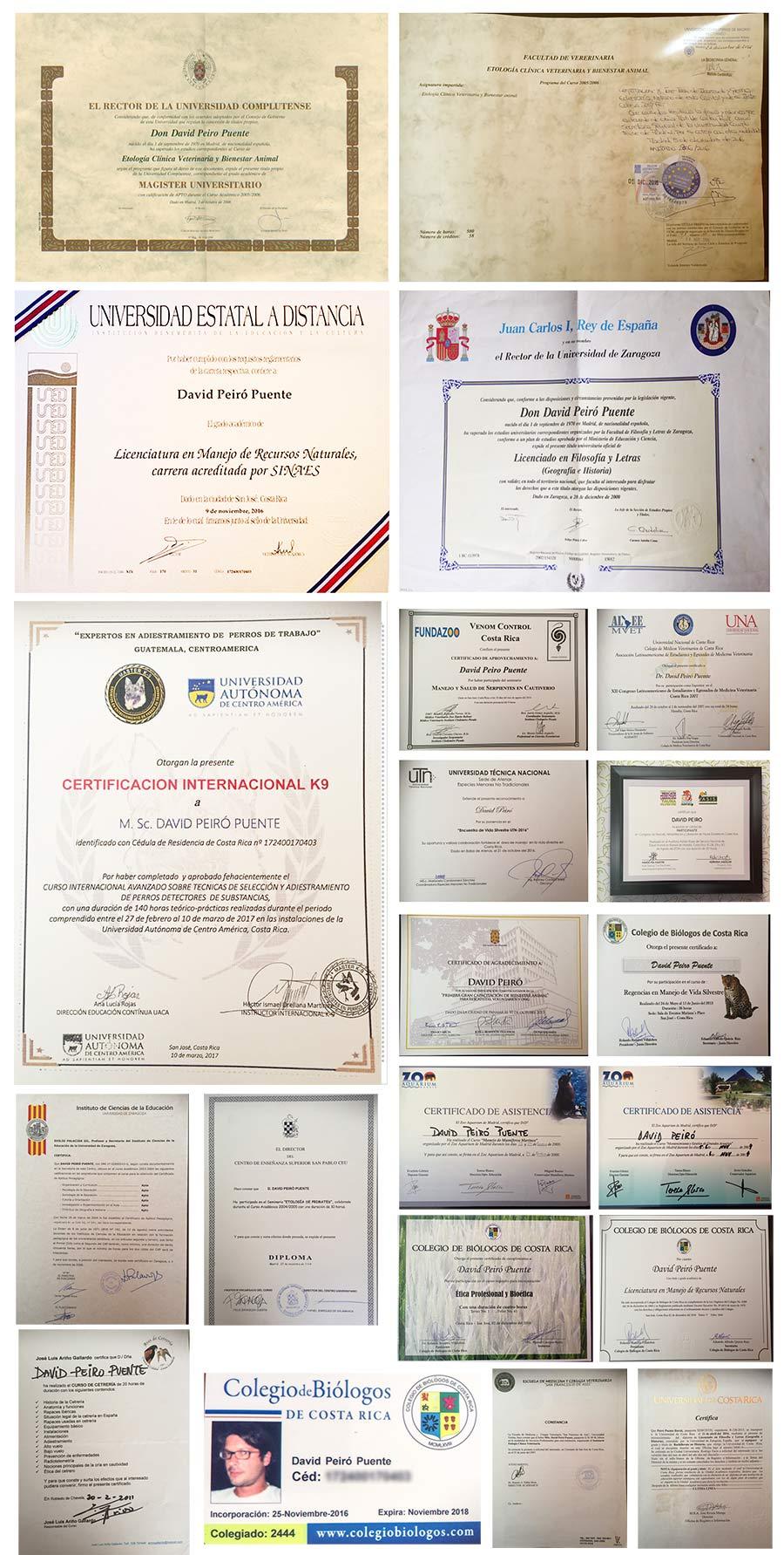Algunos Títulos y Diplomas de M. Sc. David Peiró. Director Fogaus